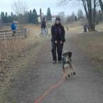 Fokus og Kontroll Hundekurs