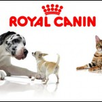 Royal Canin for alle dyr hunder.